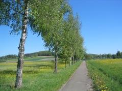 Unterampfrach66