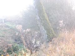HerbstlichUA09